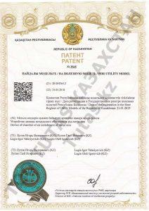 Тутас (Tutas) патент Устройство камеры воздушного обогащения руд металлов